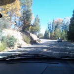 Fall In The San Bernardino Mountains