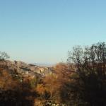 The San Bernardino Mountains
