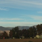 Trees In The Foreground And The San Bernardino Mountain In The Distance