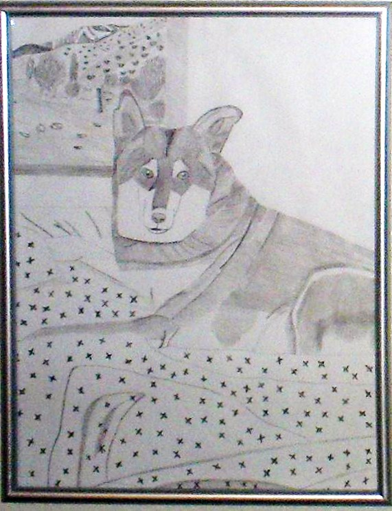 My pencil sketch of Lady dog sitting on a bed, as she often did.